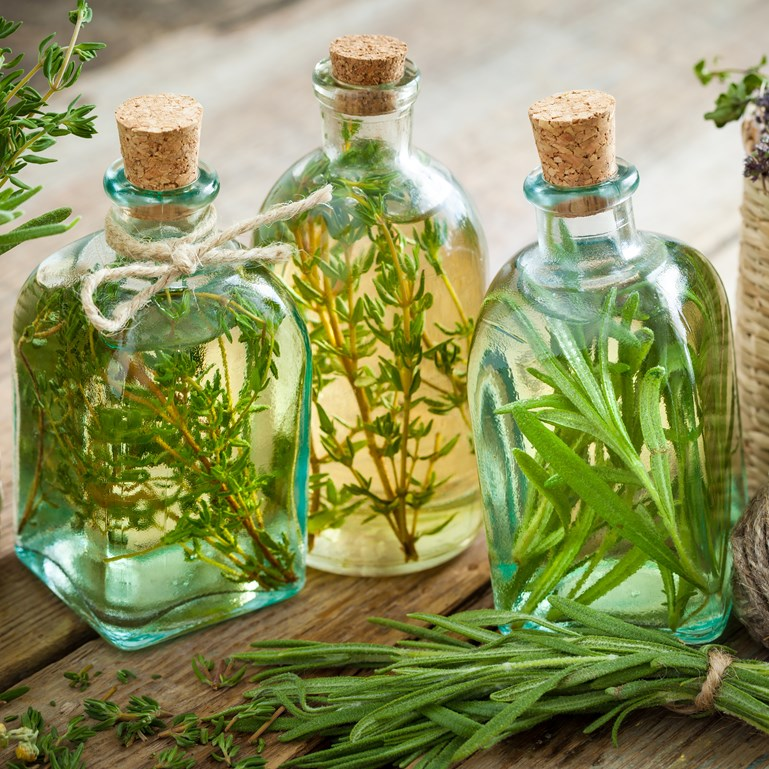 Herbal Basics: Vinegar Infusions