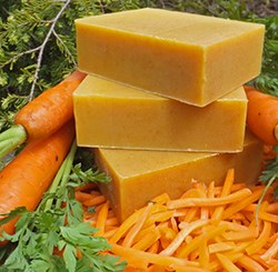 Natural Organic Carrot Shampoo