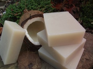 Natural Organic Coconut Shampoo