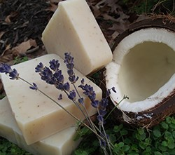 Organic Coconut Shea Natural Soap