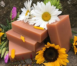 Natural Organic Sunflower Shampoo Bar
