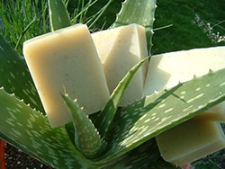 Natural-Organic-Aloe-Soap