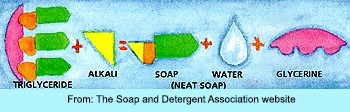 Chemistry of Soap Making