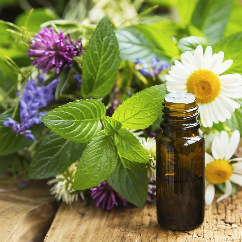Why We Use Only Real Plant Essential Oils? Blog Post Thumbnail