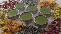 Natural Organic Chickweed Anti Itch Salve