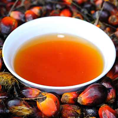 Organic Virgin Palm Oil