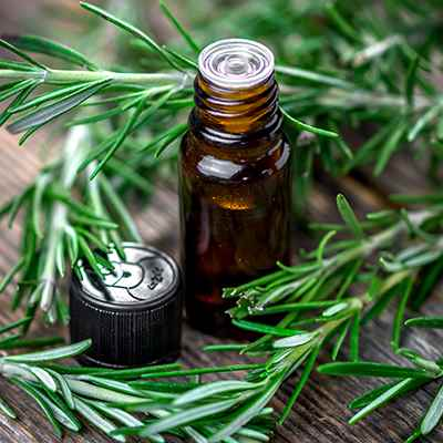 Organic Rosemary Oil Extract (ROE)