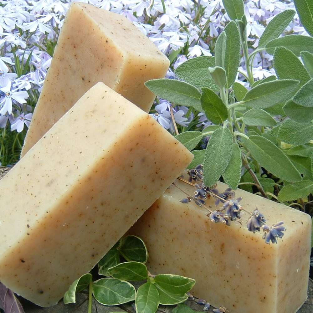 Natural Organic Coconut Milk Sage Soap