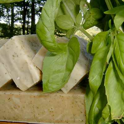 Soap: Sweet Basil
