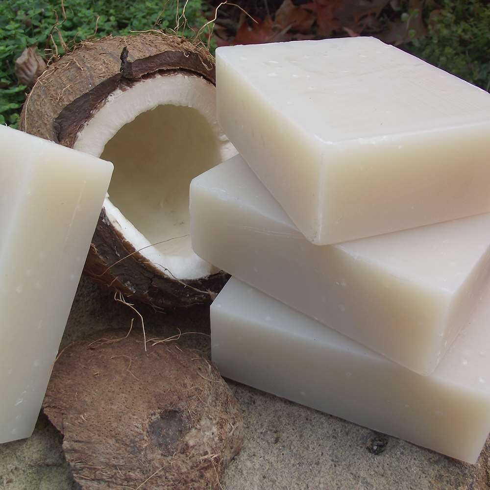 Shampoo Bar: Coconut Milk