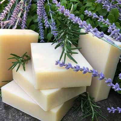 Shampoo Bar: Rosemary Lavender