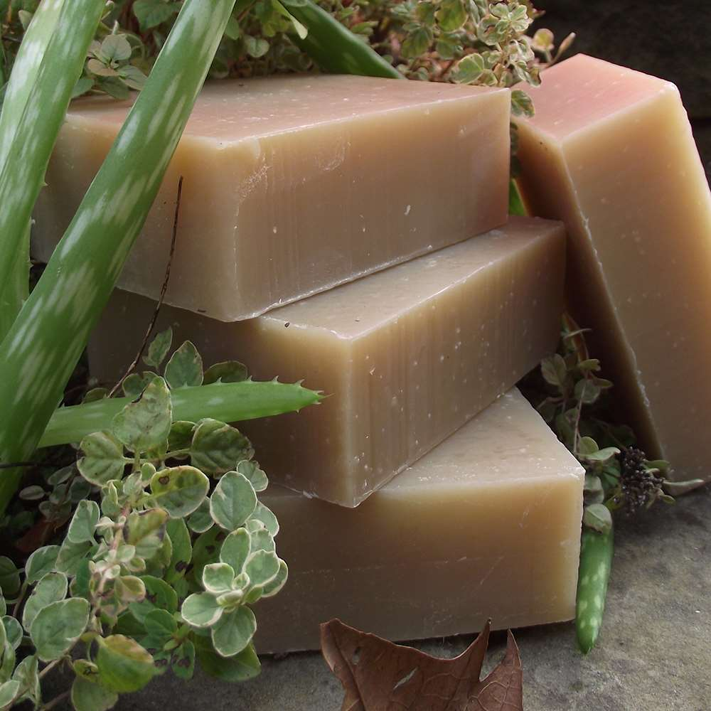 Natural Organic Neem & Tea Tree Soap and Shampoo