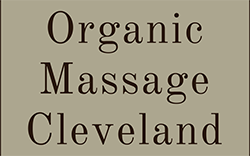 Natural Organic Skin Care Massage