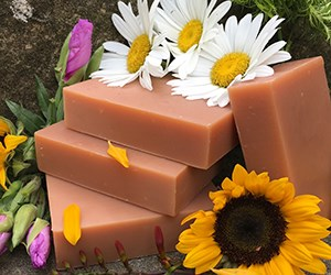 Natural Organic Shampoo Bars