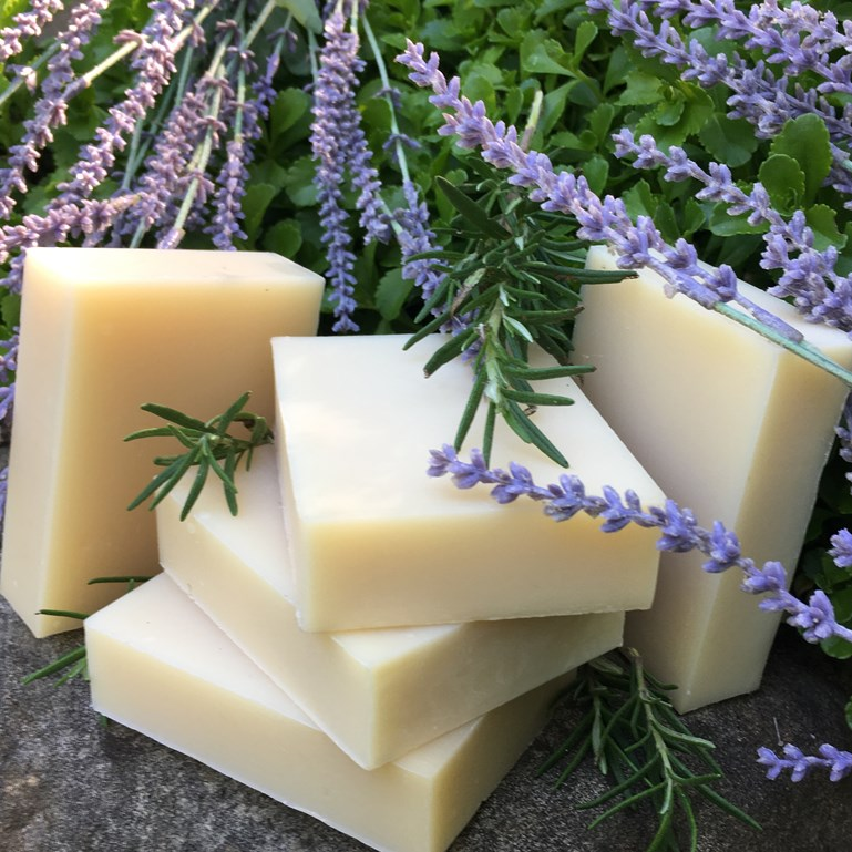 What Is The Difference Between Soap Bars and Shampoo Bars?