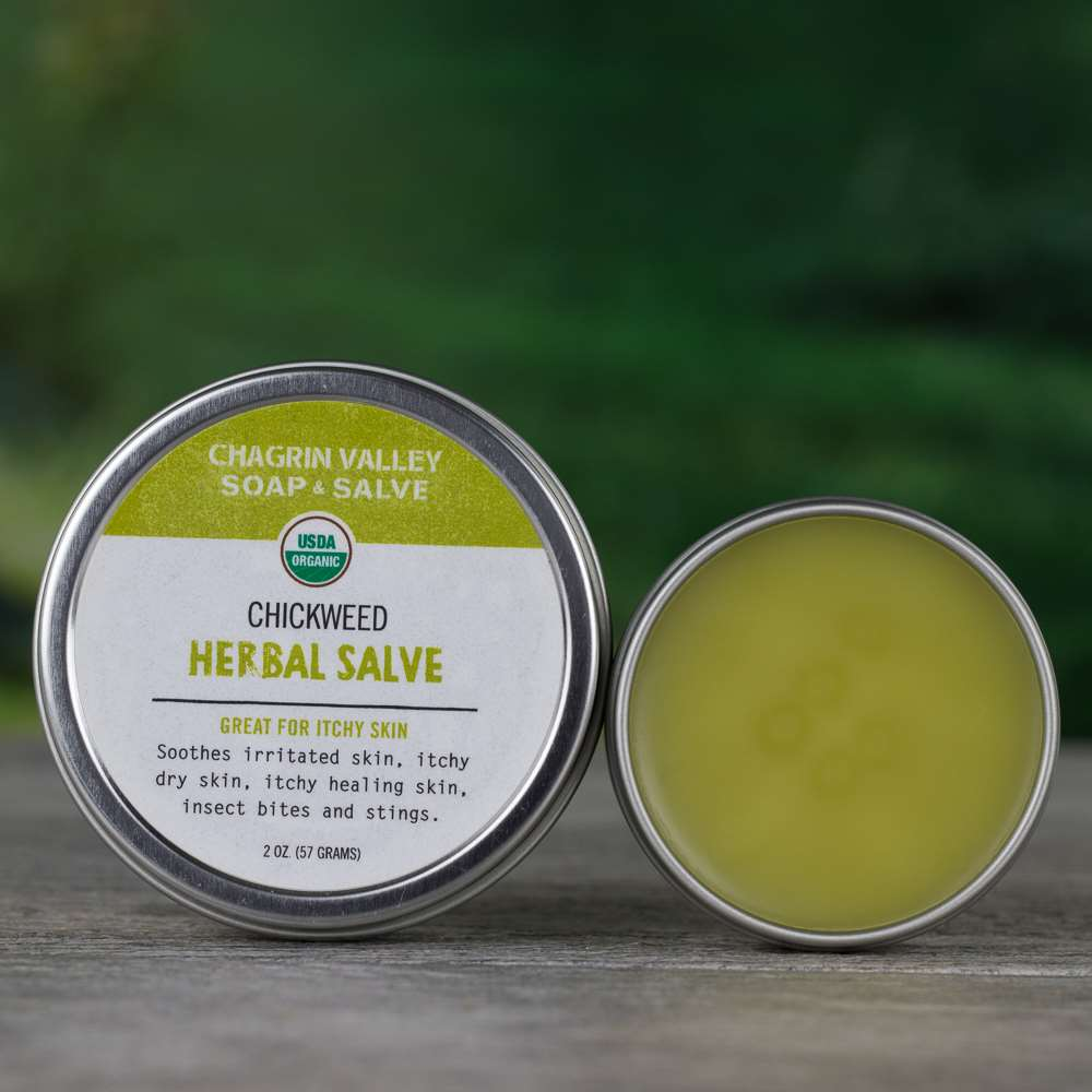 Natural Organic Chickweed Anti Itching Healing Salve
