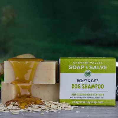 Dog Shampoo: Honey & Oats
