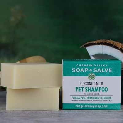 Dog/Pet Shampoo: Creamy Coconut Milk
