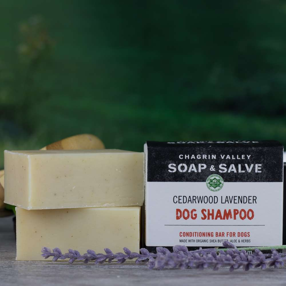 Natural Dog Shampoo Cedarwood Lavender
