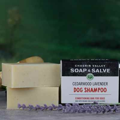 Dog Shampoo: Cedarwood Lavender