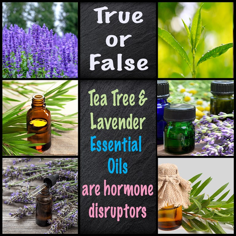 Are Lavender and Tea Tree Essential Oils Hormone Disruptors?