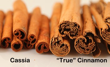 Cassia-vs-True-Cinnamon