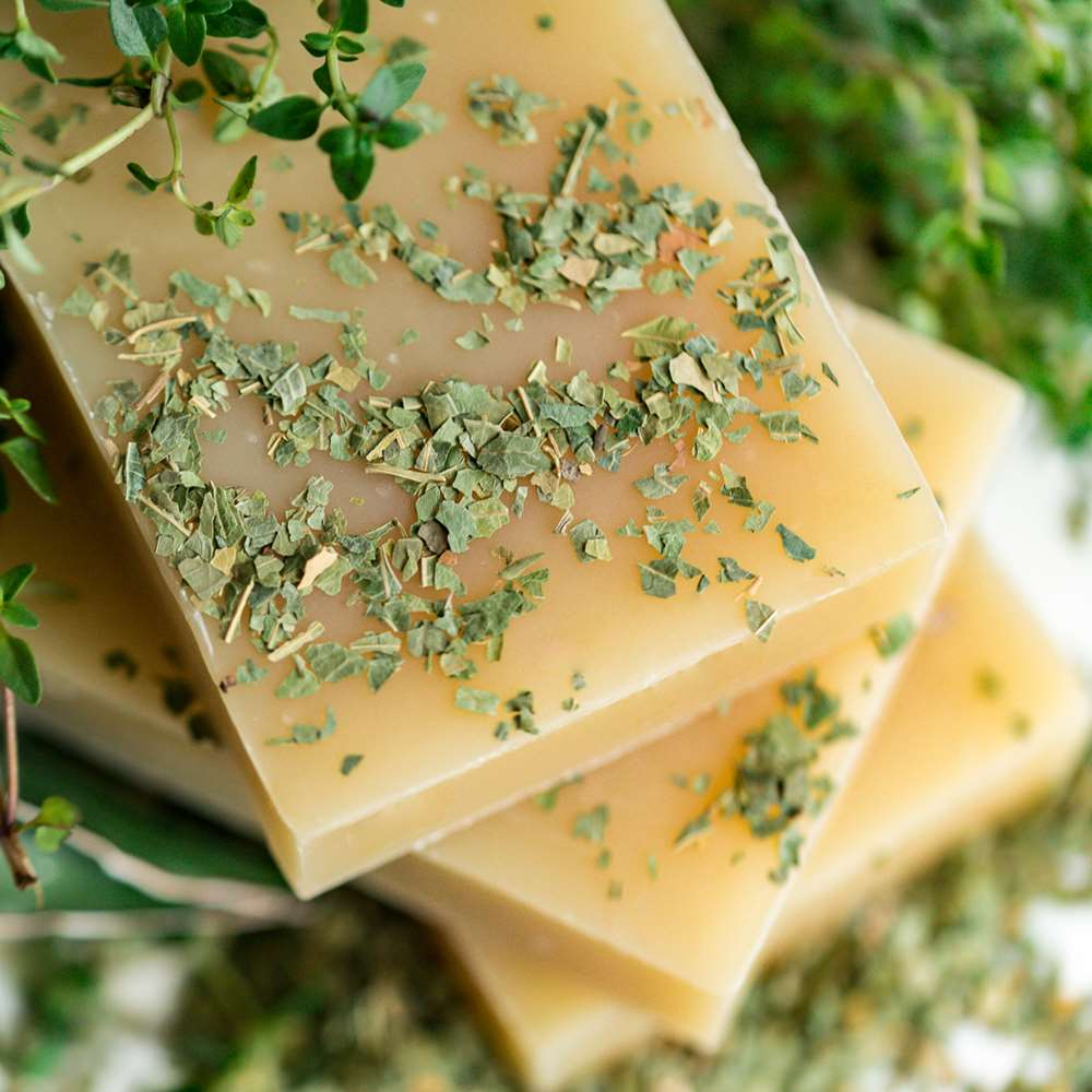 Natural Organic Neem & Tea Tree Body Soap and Shampoo